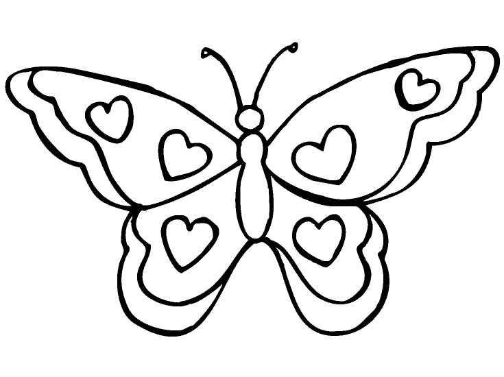 borboletas para colorir