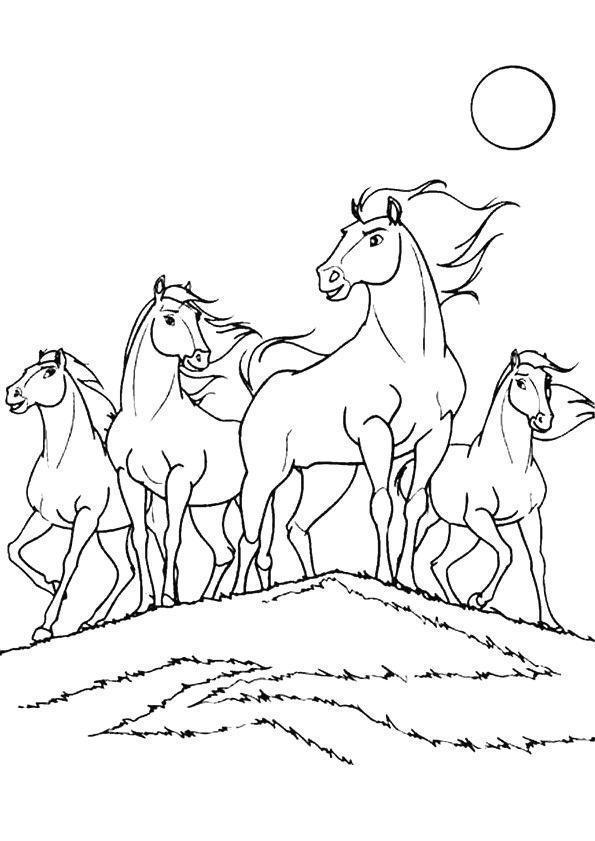 cavalos para colorir