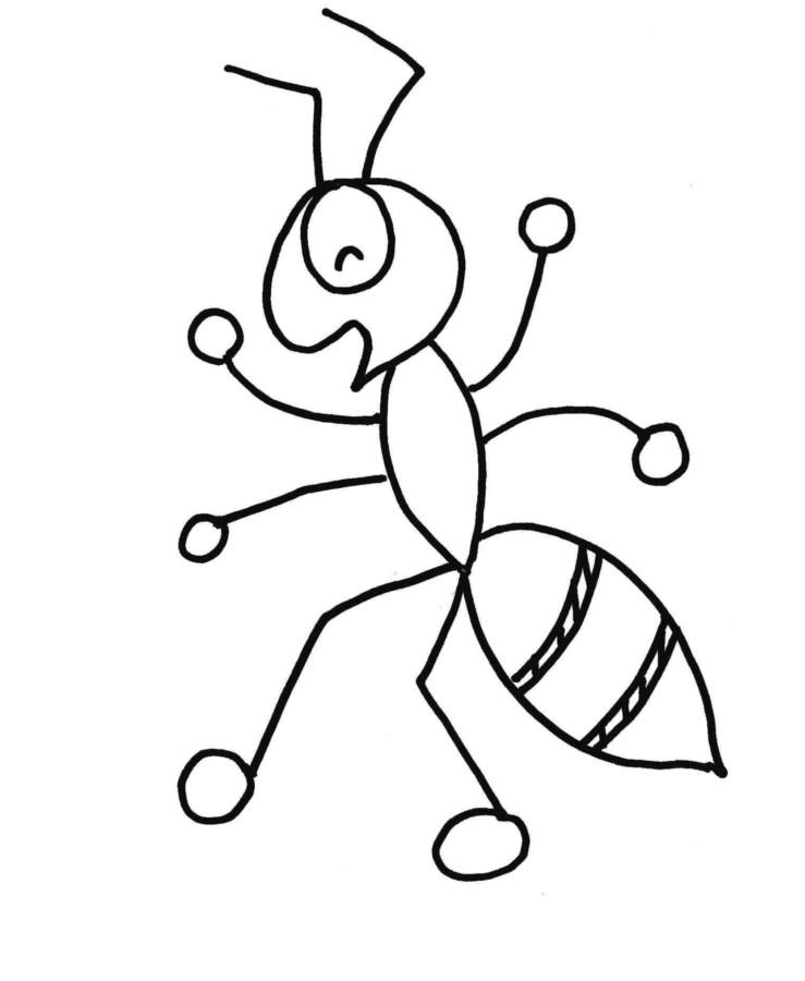 formigas para colorir