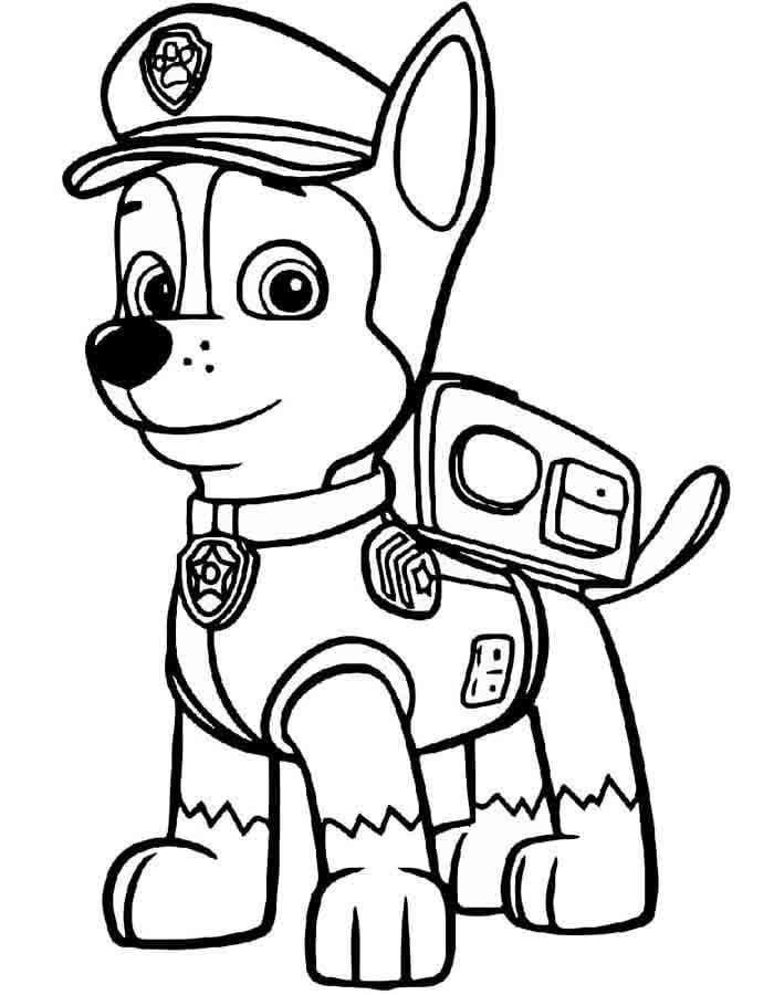 Patrulha Canina para Colorir